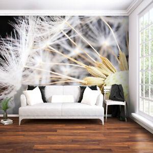Details zu VLIES FOTOTAPETE Pusteblume weiß 3D TAPETE WANDBILDER XXL  Wohnzimmer 12 Farb