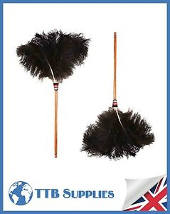 "Pack Multi Véritable Plume D'autruche Premium Dustease Duster - 28 "" + 28""-afficher Le Titre D'origine A7klnnhn-07231901-130691554"