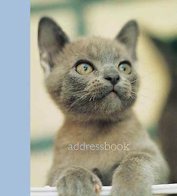 1 of 1 - Kitten at Play (Mini Address Book), 1841723010, New Book
