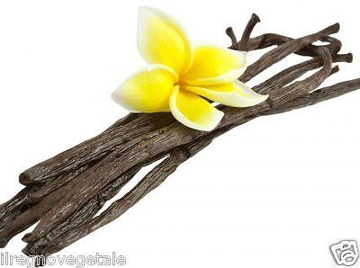 VANIGLIA Bourbon Frutti 3 STECCHE Dolci Cucina Aroma Naturale Vanilla Planifolia