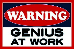 Warning-Genius-at-work-Tin-Sign-Shield-Arched-Tin-Sign-20-x-30-cm-CC0941