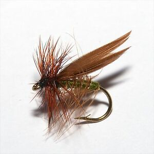 Premium Fliegen Caddis und Sedge Selection
