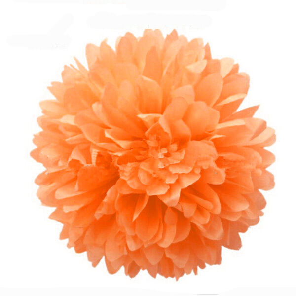 New 8'' Wedding Party's Home Outdoor Decor Tissue Paper Pom Poms Flower Balls 2X