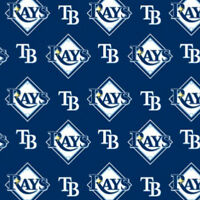 Tampa Bay Rays On Blue Mlb Baseball Sports Team Cotton Fabric Print By The Yard
