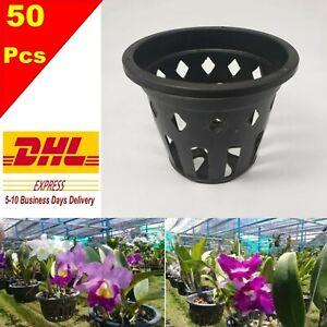 50x 4 Plastic Pot Baskets Orchid Flower Garden Home Plants Outdoor Thai Ebay