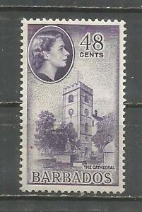 BARBADOS-MH-SCOTT-244