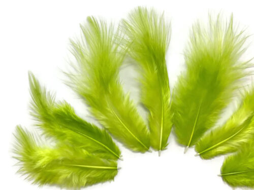USA SELLER Solid Lime Green Rooster Fluff Chickabou Feathers 1 Dozen