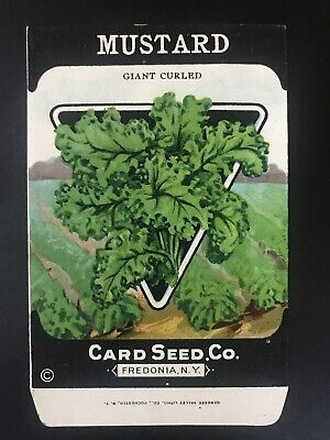 1920/'s LITHO CARD CO KALE CURLED SCOTCH SEED PACKET