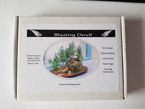 Image is loading Bonsai-Tree-Kit-Personalised-grow-your-own-tree-
