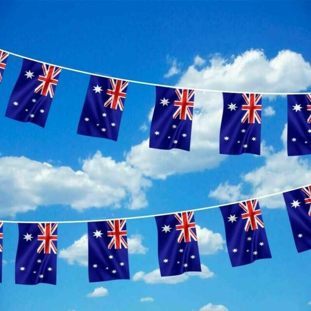 Aussie Australian Bunting Flag Banner String Australia Day Party Decor 10 Flags