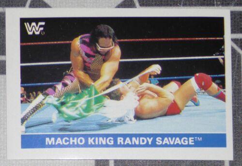 Macho Man Randy Savage WWF 1991 Panini Euroflash Superstars Sticker Card 100 WWE