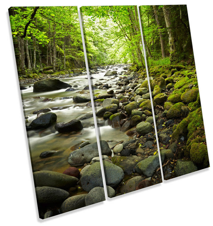 Forest Stream River Woods TREBLE CANVAS WALL ART Square Print Picture