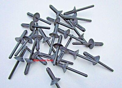 """20452072 25 Nylon Blind Rivets 1//4/"""" For GM"""