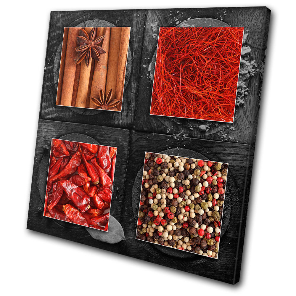 Food Kitchen Herbs Spices Indian SINGLE TOILE murale ART Photo Print