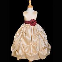 Champagne Wine Flower Girl Dress Pageant Taffeta Gown Lg 2T 3T 4T 5T 6 7 8 9 10