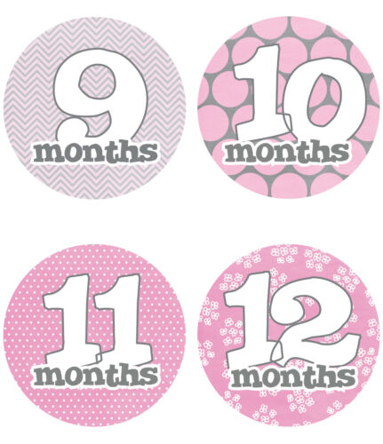 "Baby Girl Monthly Stickers NEW 12 months Just Born Gray//Pink//White 4/"" circle"