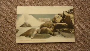 OLD-AUSTRALIAN-POSTCARD-c1900-VICTOR-HARBOUR-SA-VIEW-OF-THE-BREAKWATER