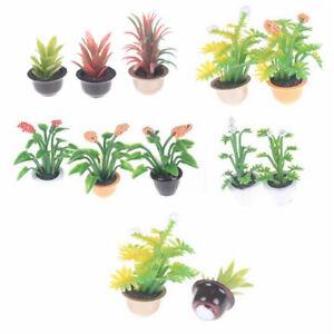 Dollhouse Miniature Garden Flower Pot Plant Doll House Miniatures Accessories 8655373238158