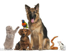 Kintraks Animal Record / Pedigree software for Windows or Mac. Suits all animals