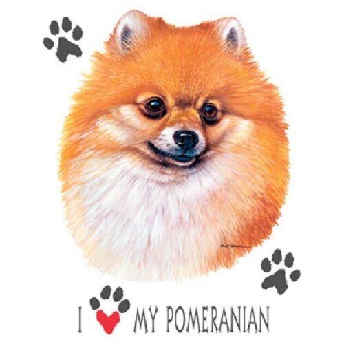 Pomeranian Dog HEAT PRESS TRANSFER For T Shirt Tote Bag Sweatshirt Fabric #893b