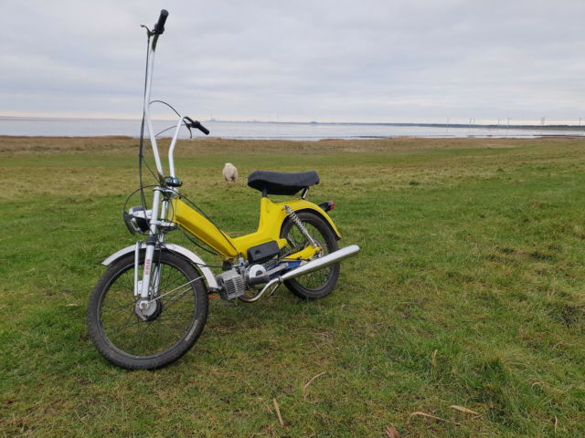 Puch Puch maxi k, 1977, Total renoveret puch maxi k. Kan…