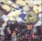 Bush Fire 5020675571020 by Evan Parker Audio Book