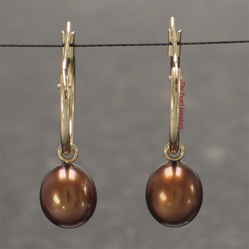 14k Yellow gold Hoop is 15 X1.25mm; 8mm Chocolate Cultured Pearl Earrings TPJ