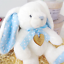 Personalised-Baby-Bunny-Gift-Engraved-Tag-Traditional-Bunny-1st-Birthday-Newborn miniatuur 6