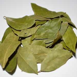 Handpicked-Dry-Bay-Leaves-from-GREEK-MOUNTAINS-Creta-island-2019-FREE-P-amp-P