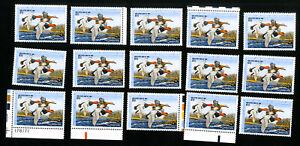 US-Stamps-RW54-VF-Lot-of-15-Face-Value-150-OG-NH-Scott-Value-262-00