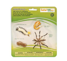 Life Cycles of a MOSQUITO # 662616 ~ FREE SHIP in USA w/ $25+SAFARI,Ltd.