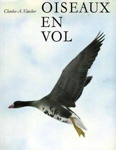 Oiseaux-en-vol-Charles-A-Vaucher
