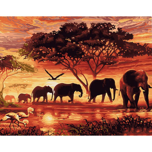 """16*20/"""" Paint By Number Kit Oil Painting DIY Elephant Setting Sun Canvas Art Wall"""