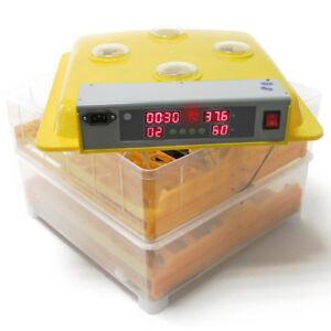 Incubateur automatique à 96 oeufs, kit de naissance d'hygromètre à révolution automatique d'oeufs