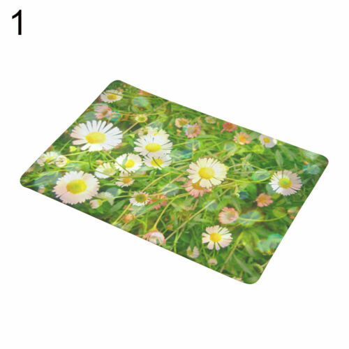 FE Flower Rose Cactus Plant Non-slip Door Mat Floor Carpet Rug Bathroom Pad Use