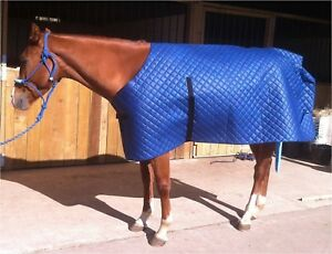 Image Is Loading Horse Rug Le Under Super Drying