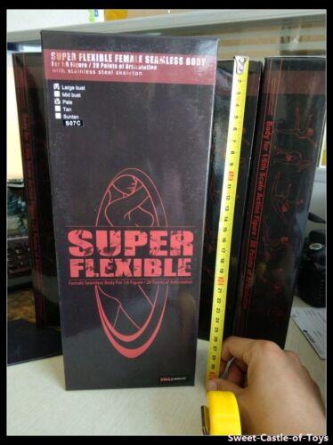 1//6 Phicen Flexible Steel Skeleton Seamless Pale Large Bust S07C Body TBLeague