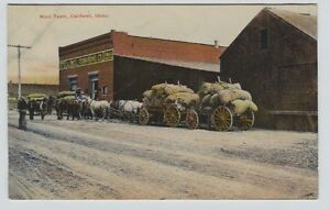 1910-Caldwell-Idaho-street-scene-Horse-Drawn-Wool-team-Awesome-Color