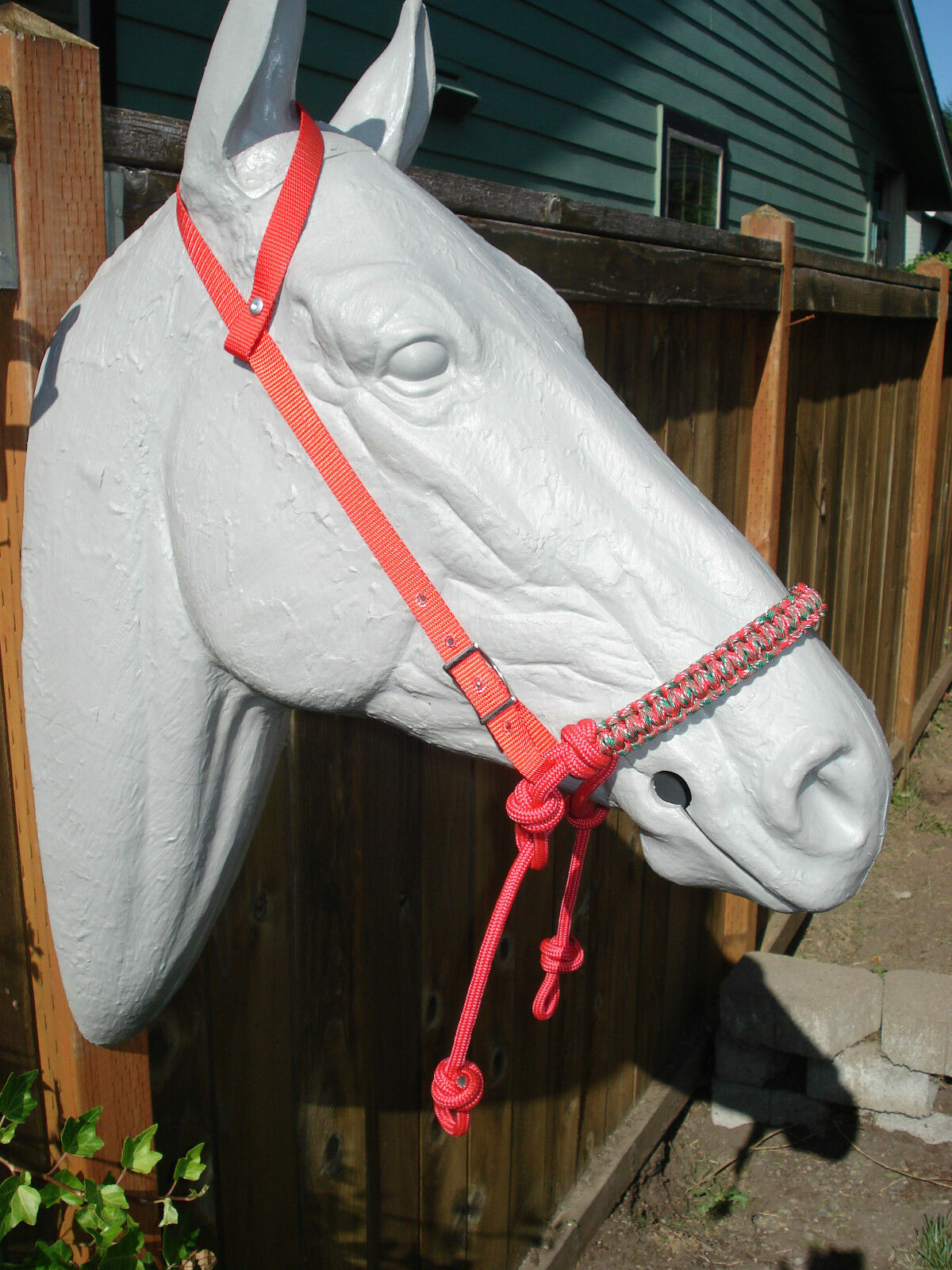 Red Indian Bosal w  Red One Ear Headstall