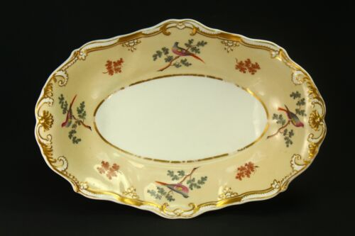 ! Antique 1820's SPODE Felspar Oval Plate Hand Painted Fine Porcelain w. Birds