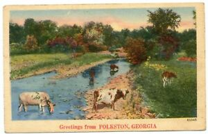 COWS-IN-CREEK-GREETINGS-FROM-FOLKSTON-GEORGIA-POSTMARKED-1948-LINEN-POSTCARD-A6