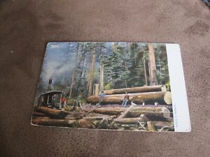Tuck-California-Giant-Trees-series-postcard-Steam-Lumbering-Lumber-Jacks
