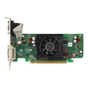Pegatron pour Dell ATI Radeon HD 3450 256 Mo PCI-E Carte Vidéo DVI HDMI VGA 0F342F