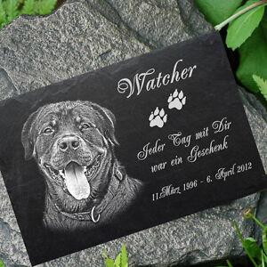 Rottweiler GRABSTEIN Tiergrabstein Gedenkstein Hund 016 ►Fotogravur◄ 30 x 20 cm
