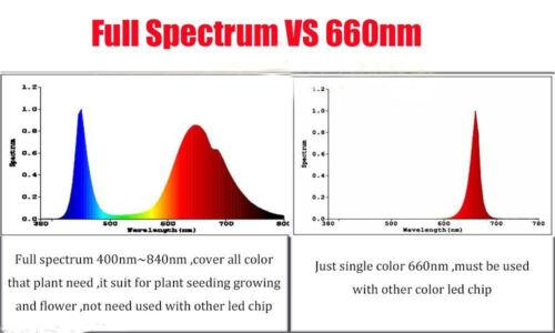 5pcs DC 12V Input 10W LED Driver 10w COB full spectrum led grow chip 380-840nm