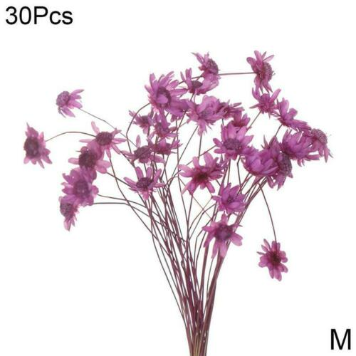 Flowers Daisy Small Star Bouquet Natural Plants Floral Wedding Home Party Decor