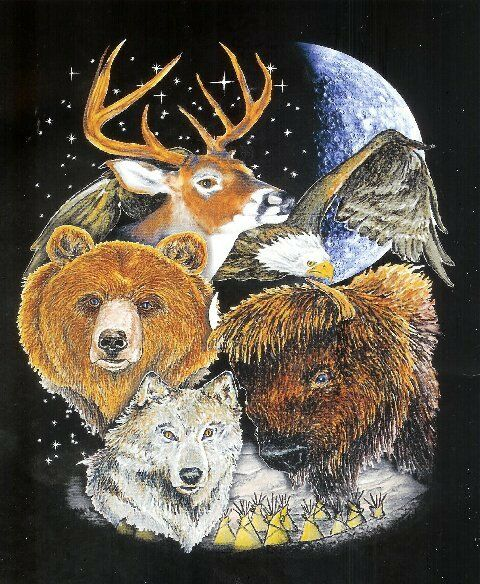 "Bear Eagle Deer Wolf Montage Fleece throw Blanket 50"" x 60"" moon stars new"