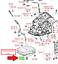 LEXUS OEM FACTORY ATM TRANSMISSION PAN DRAIN PLUG AND GASKET 1999-2009 RX MODELS