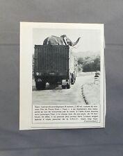 PUB PUBLICITE ANCIENNE ADVERT CLIPPING 110517 SIAMS ELEPHANT VEDETTE  FILM YOYO