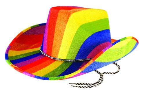 Adults Rainbow Cowboy Felt Hat Mens Gay Pride Carnival Fancy Dress Costume Hat